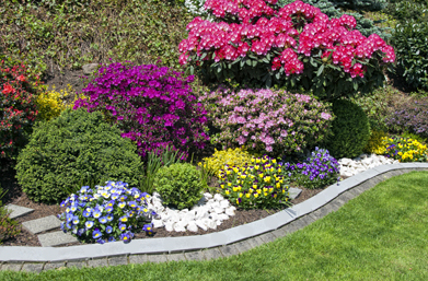 curb appeal | CurbPro | Plant And Tree Installation